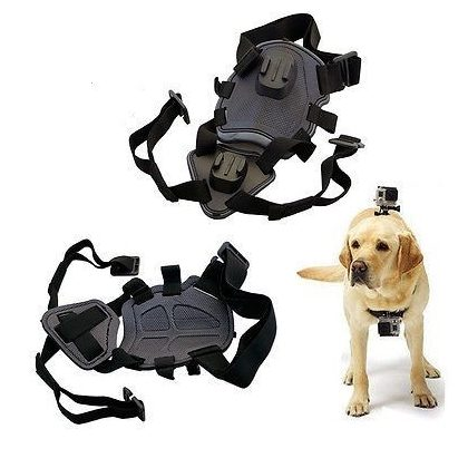 Dog harness with 2 mounting points for sports camera - universal - sjgp-128